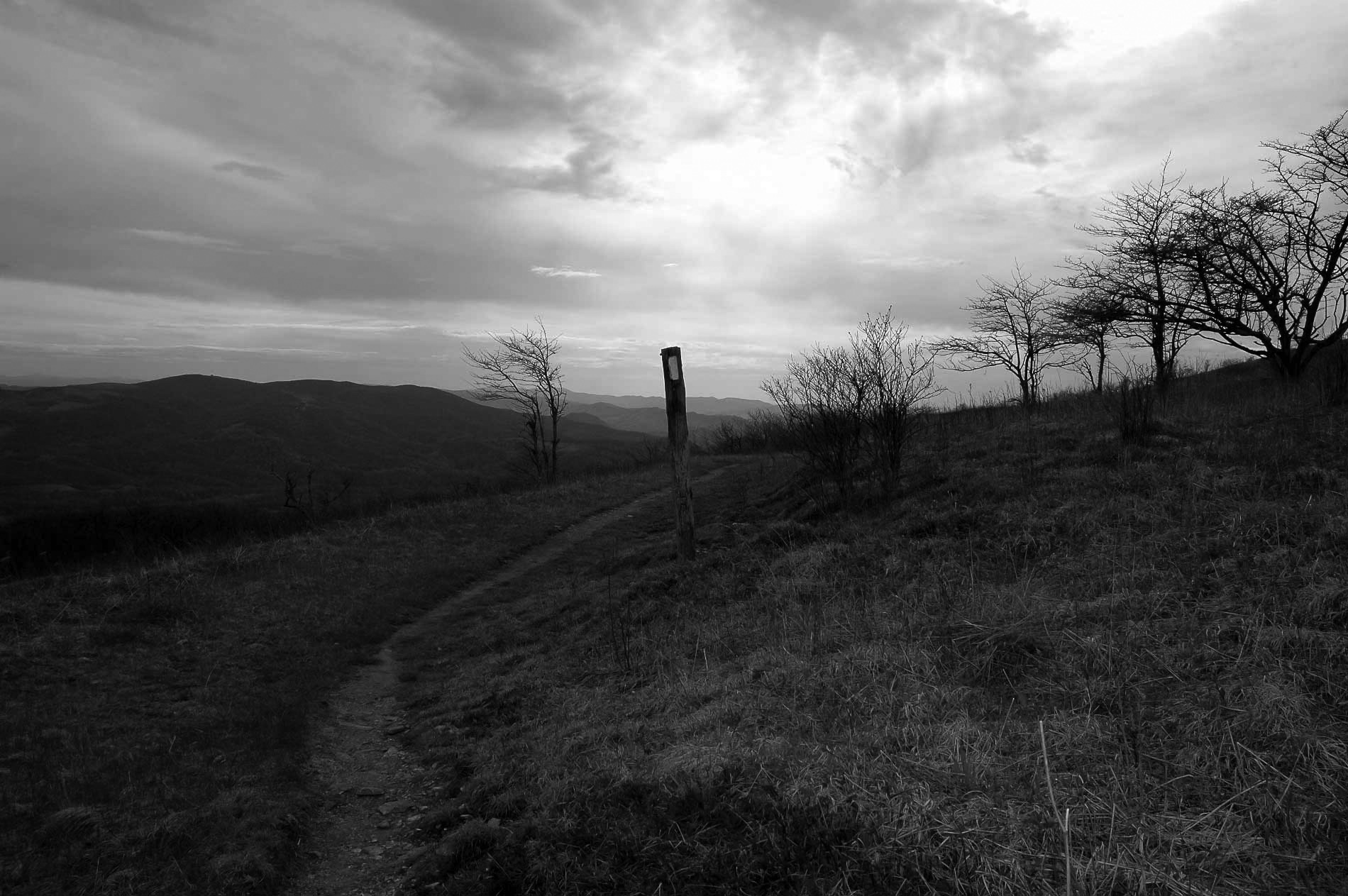 image from whitetop mountain virginia